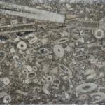 Halkyn Marble - geology